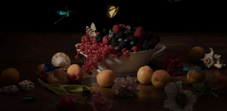 still-life-030_Ellena-Scheufler_bowl with forrest fruits-