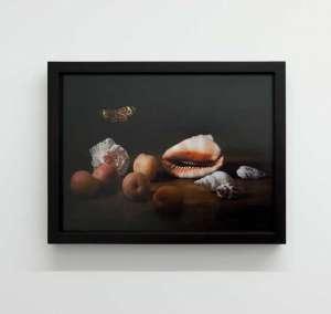 still-life-036_Ellena-Scheufler_muscheln aprikosen